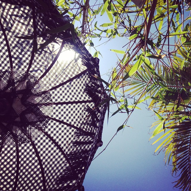 Don't forget to look up! #sunnyperth #chintacafe #sunshine #perthlife #perthcafe